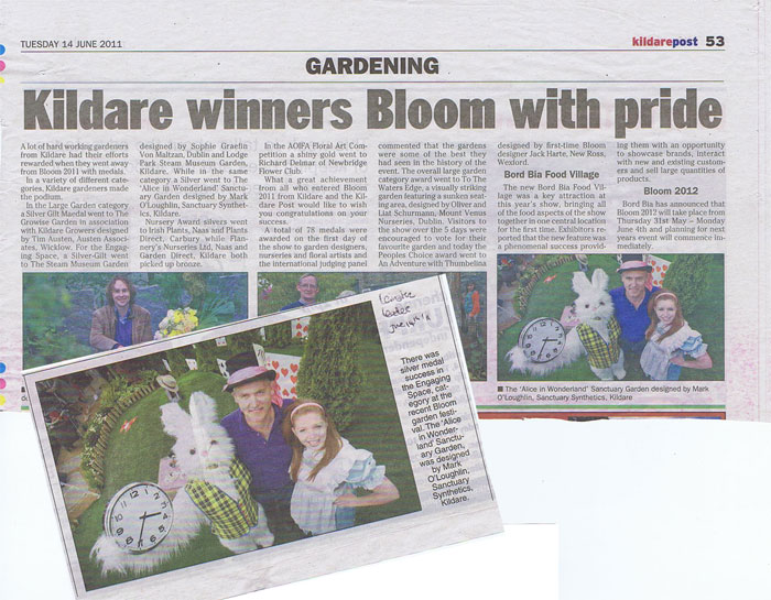 KildarePapers_June2011