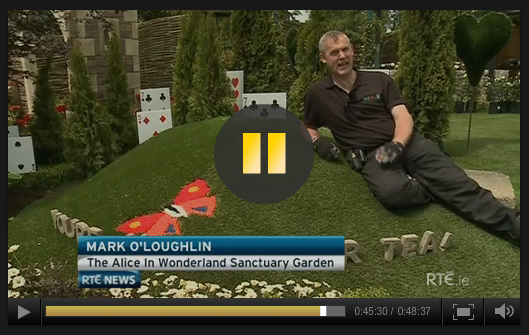 Mark on RTE News