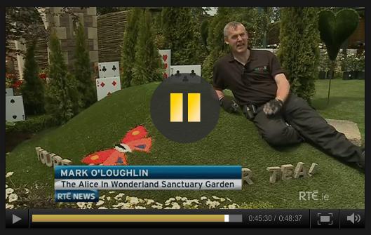 Mark on RTE News