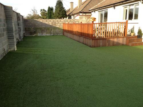 Stillorgan Back Garden Jan 2012