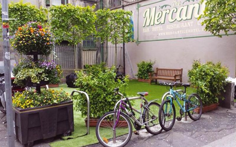 Sanctuary Grass at Bloom Fringe Festival Dublin