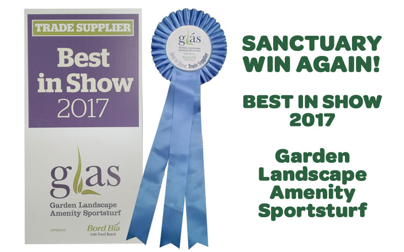 Sanctuary win another award!