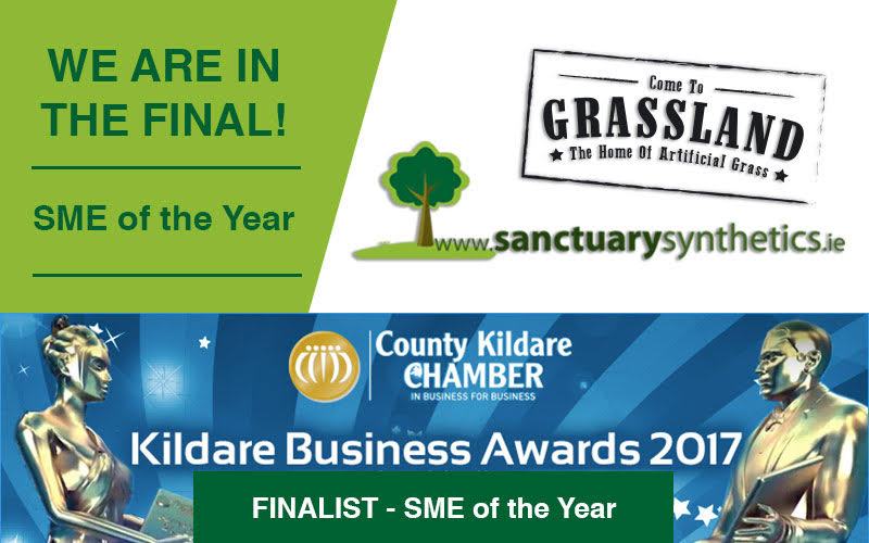Finalists for Kildare Business awards.